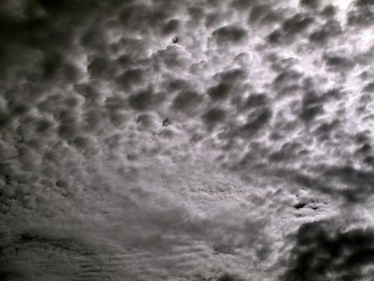 1_0_149_1cabo_clouds5_v2x_360.jpg