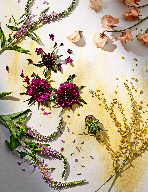 FlowerWatercolor3_864.jpg