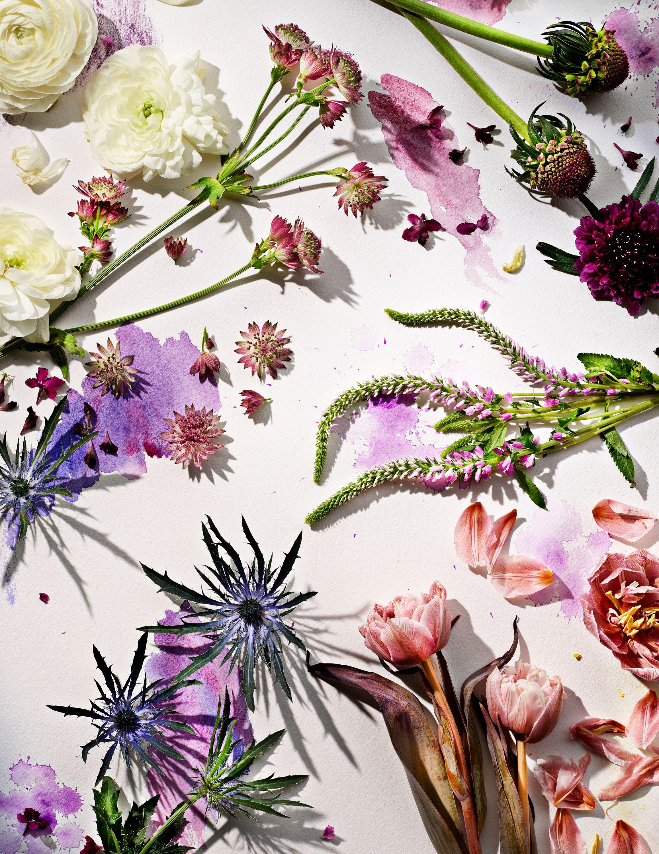 FlowerWatercolor2_857.jpg