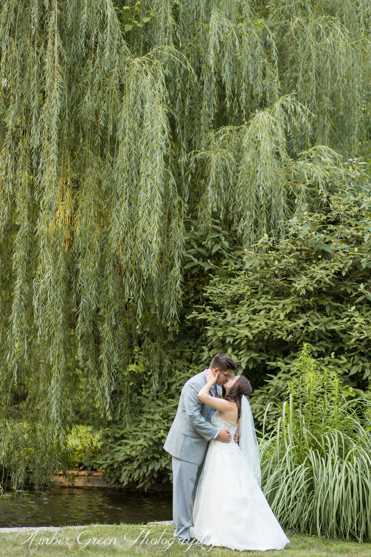 The Weeping Willow at the Koi Pond