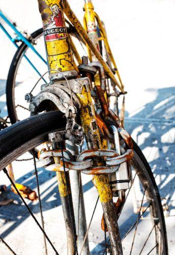 1padlocked_bike_sml.jpg