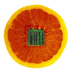 1Electric_Orange.jpg