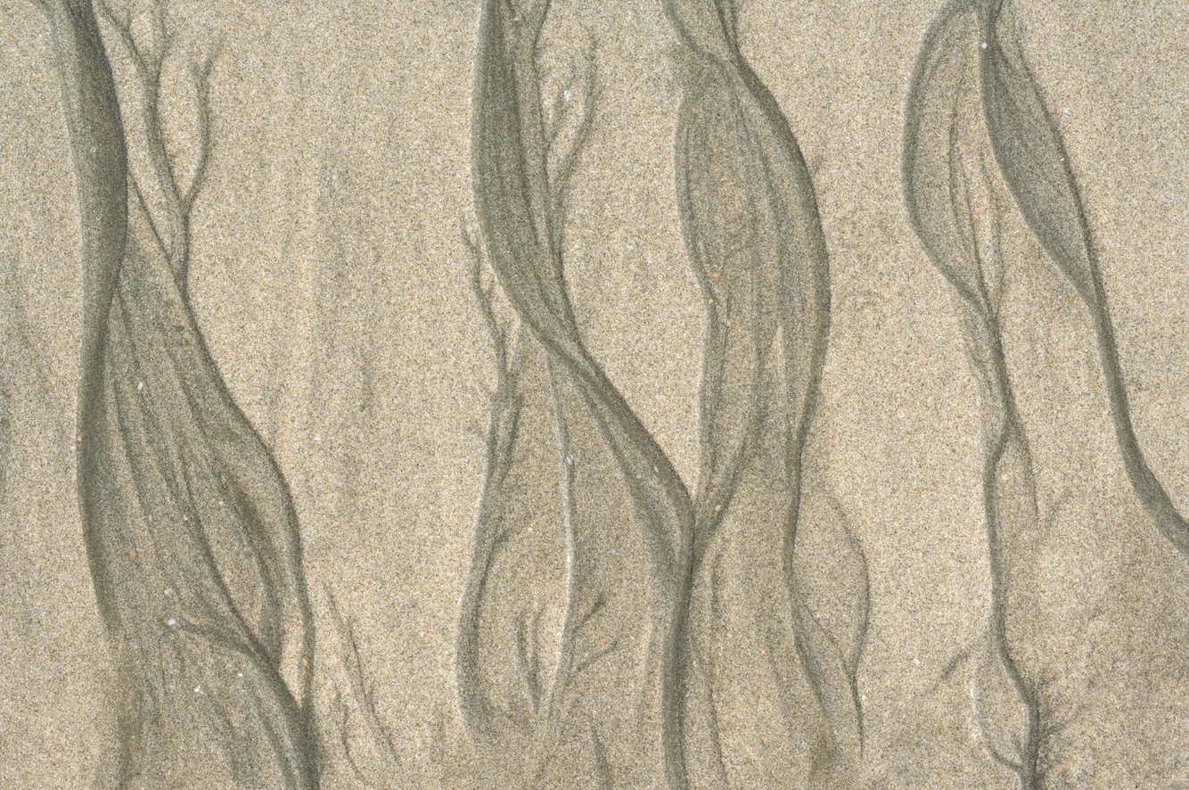 Tidal Flow Pattern 2