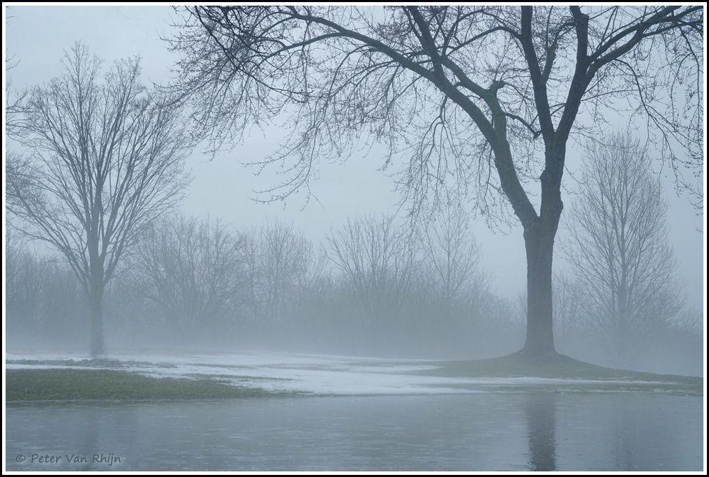 Foggy Inspiration