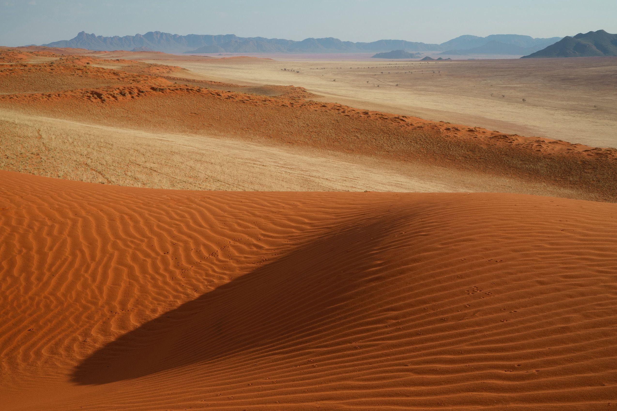 Namib Rand 1