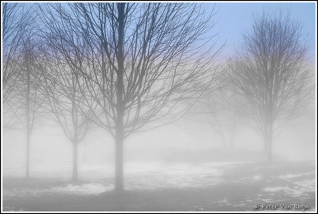 Ground Fog