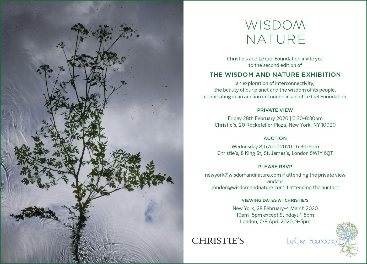 Wisdom-Nature-Invitation-1.jpg