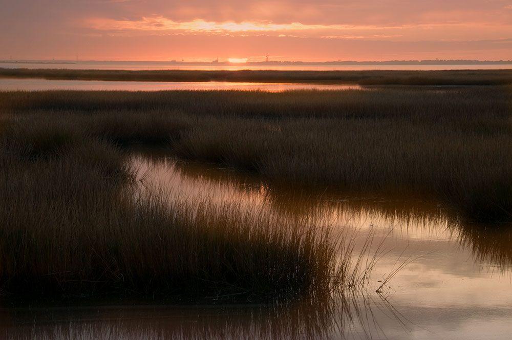 1sunset_over_wetlands.jpg