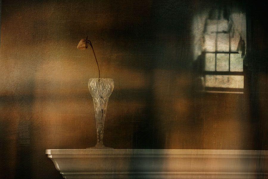 1Disguised_As_Solitude.jpg
