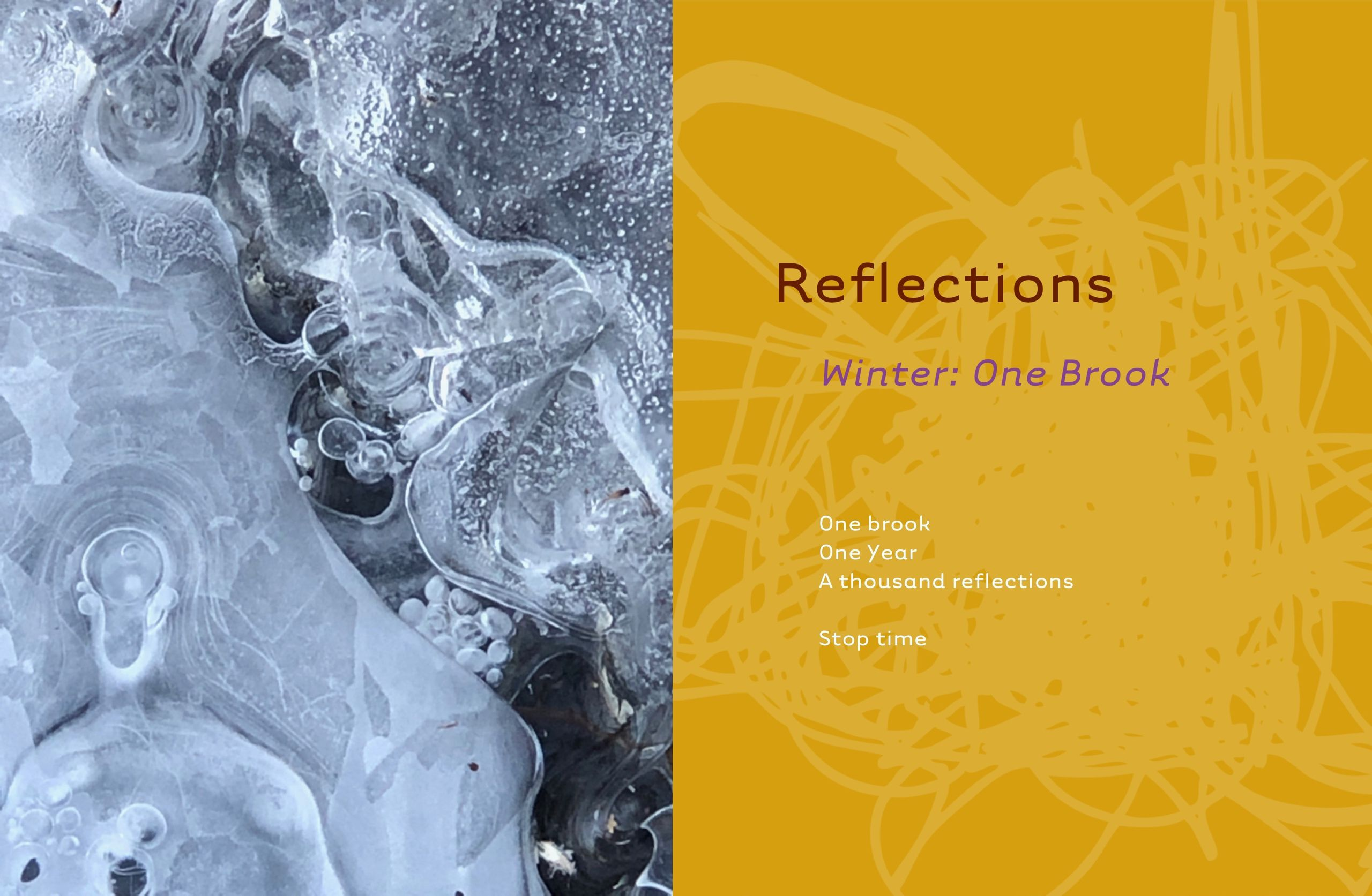 Reflections: Winter, Series 29