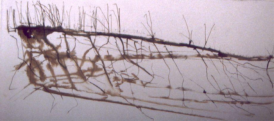 Root Work