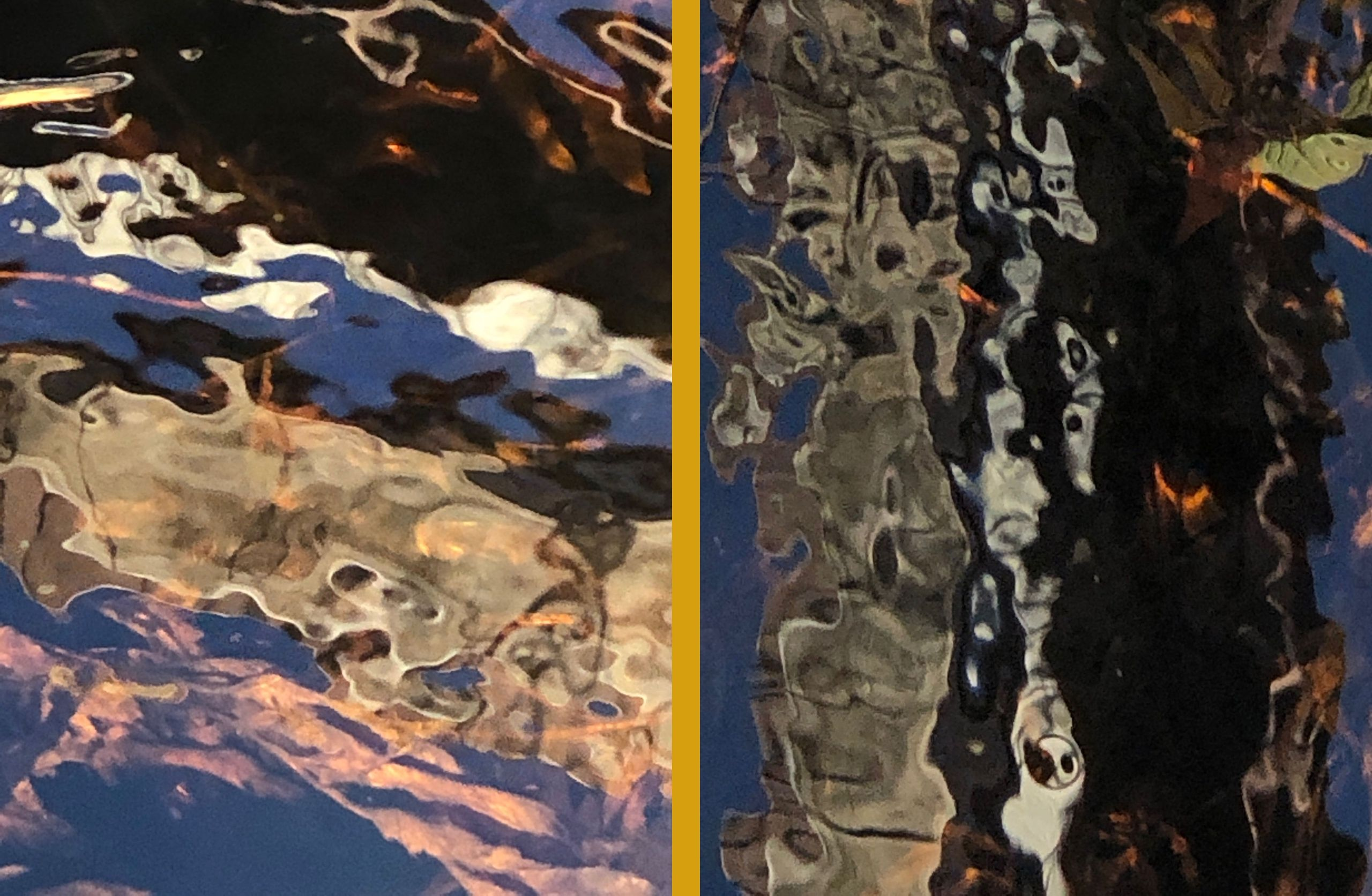 Reflections: Fall, Series   28,  1 and 9