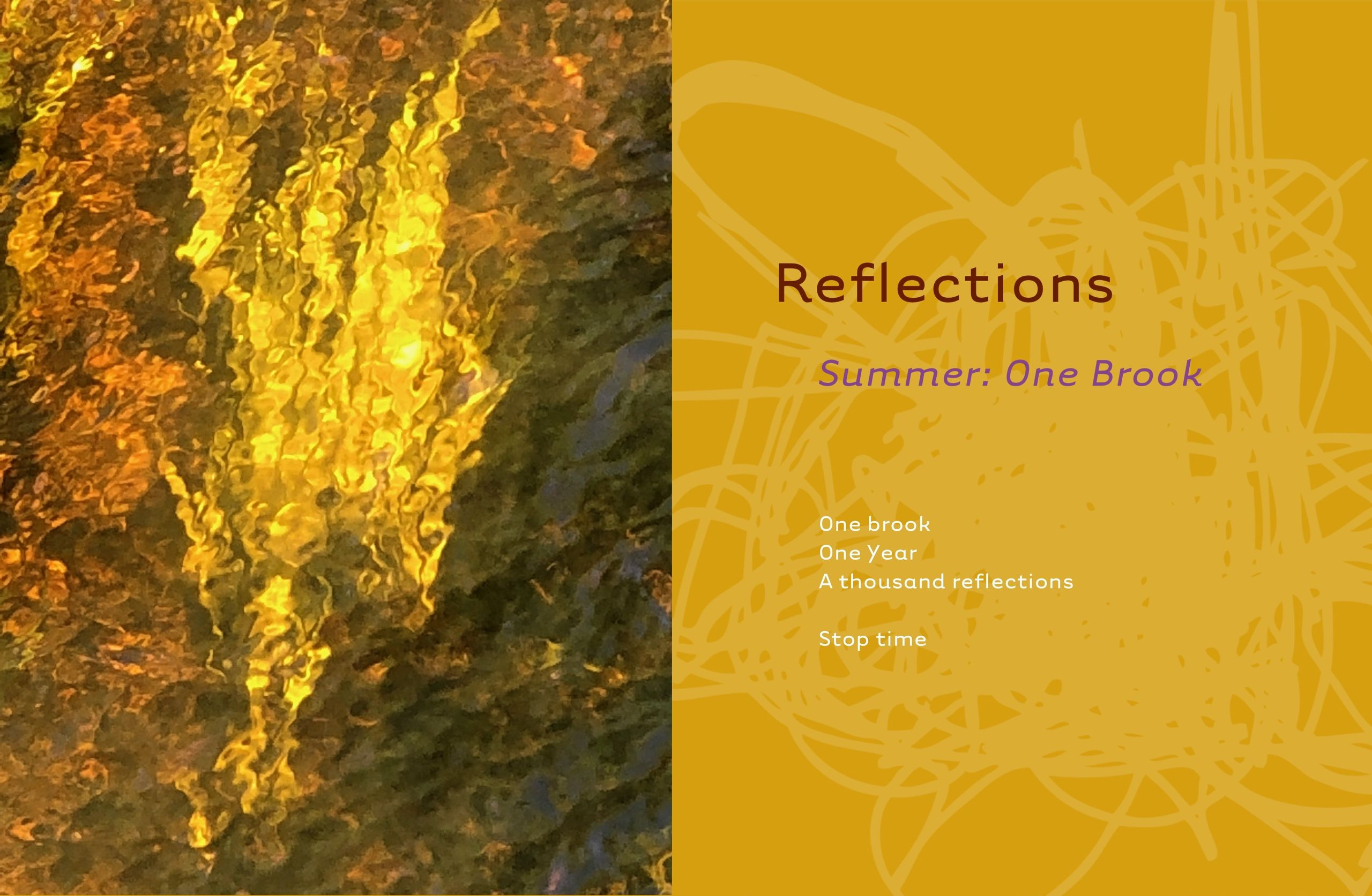 Reflections: Summer, Series 12, 10
