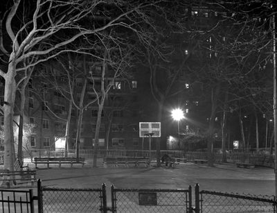 Backyard-L8.jpg