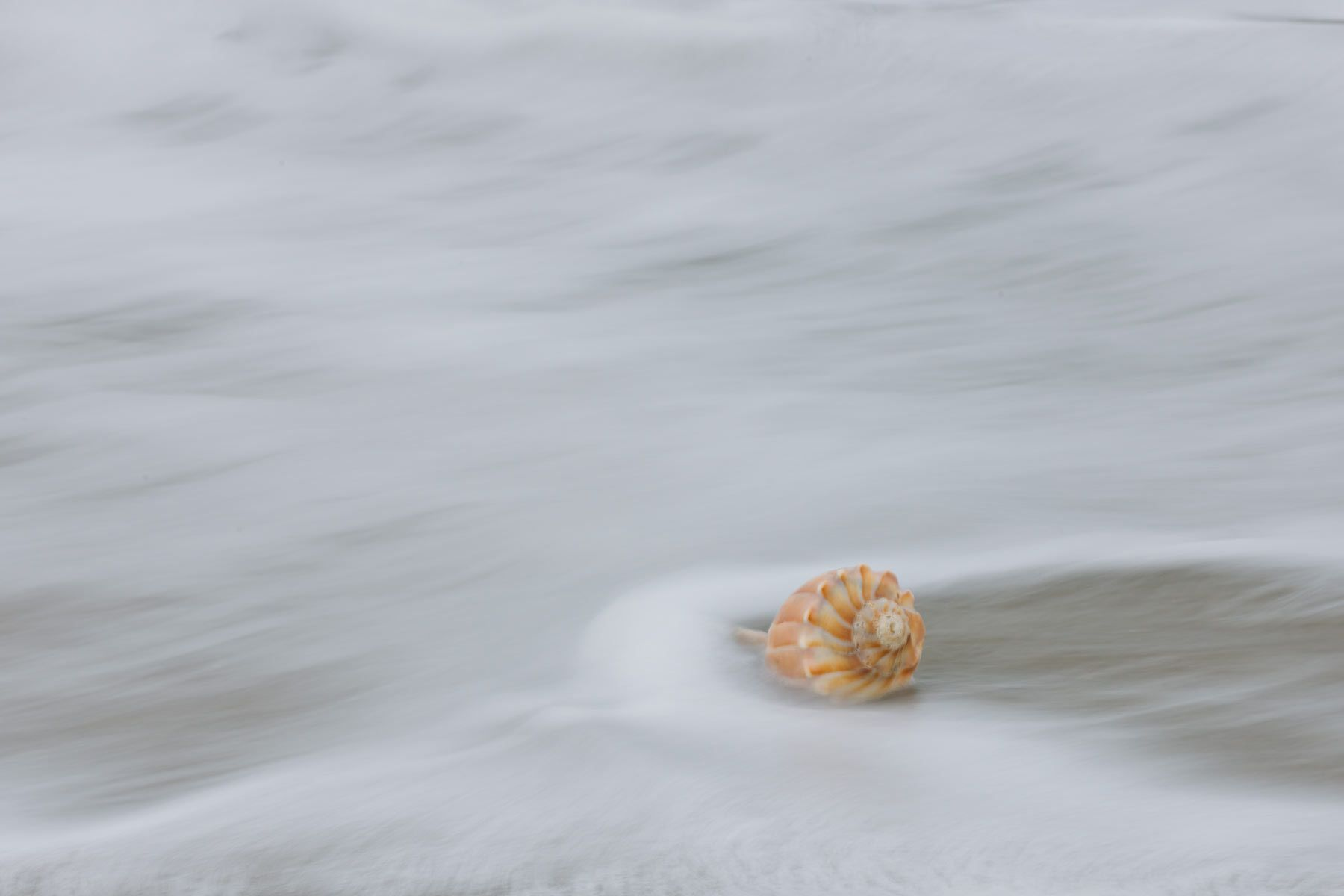 1sand__sea__and_shell.jpg