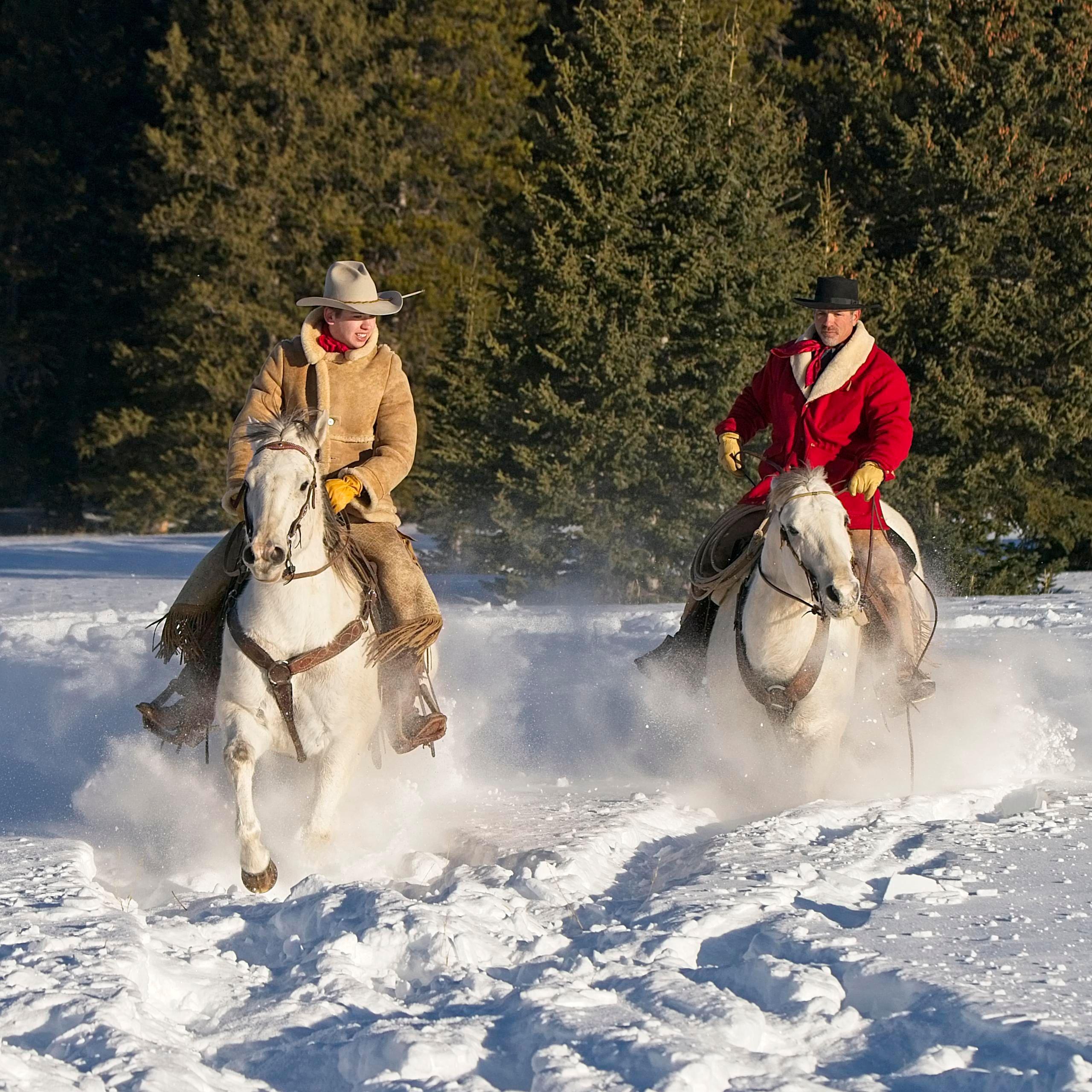 """Snow Racing"""