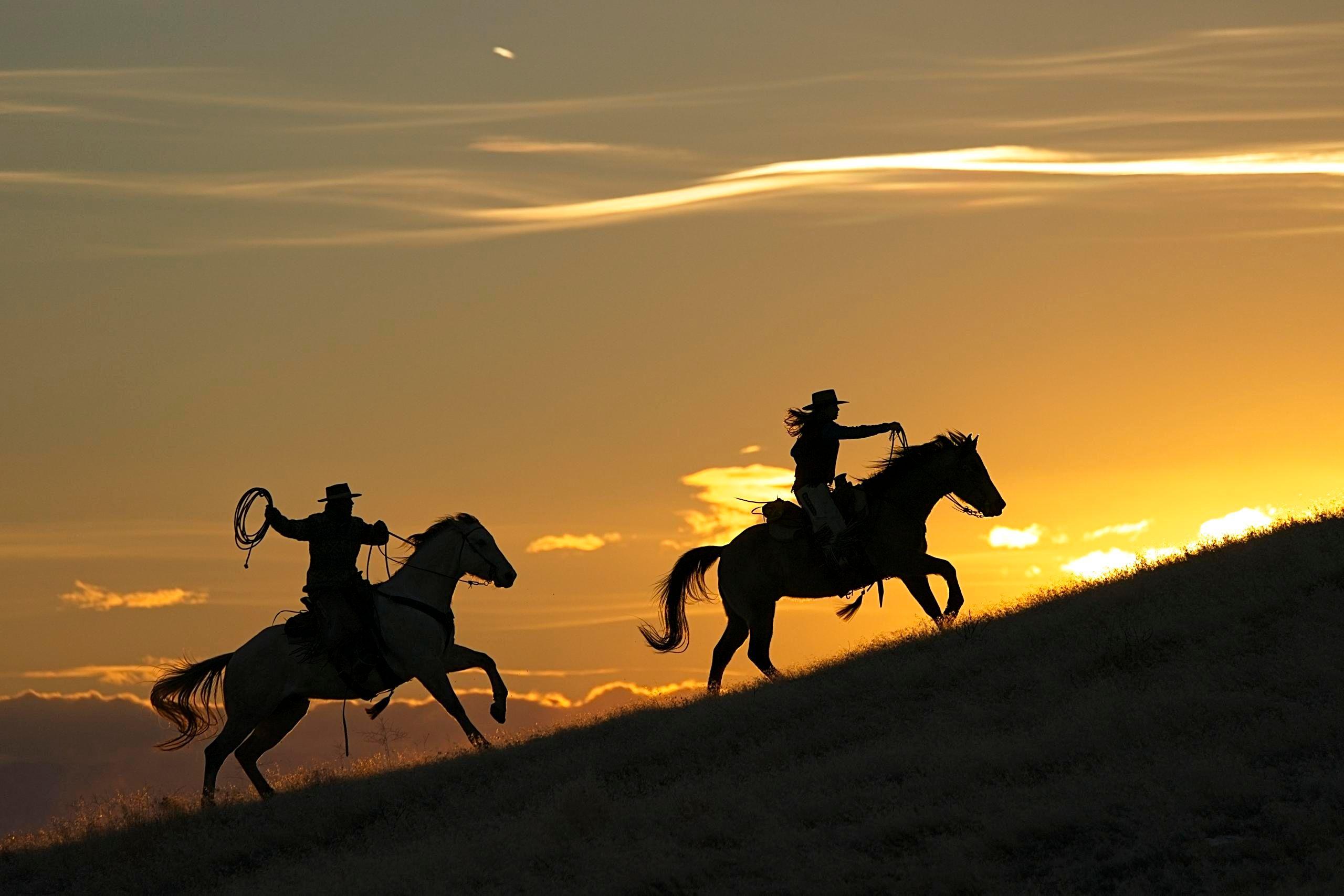 """""""Sunset Prancing"""""""