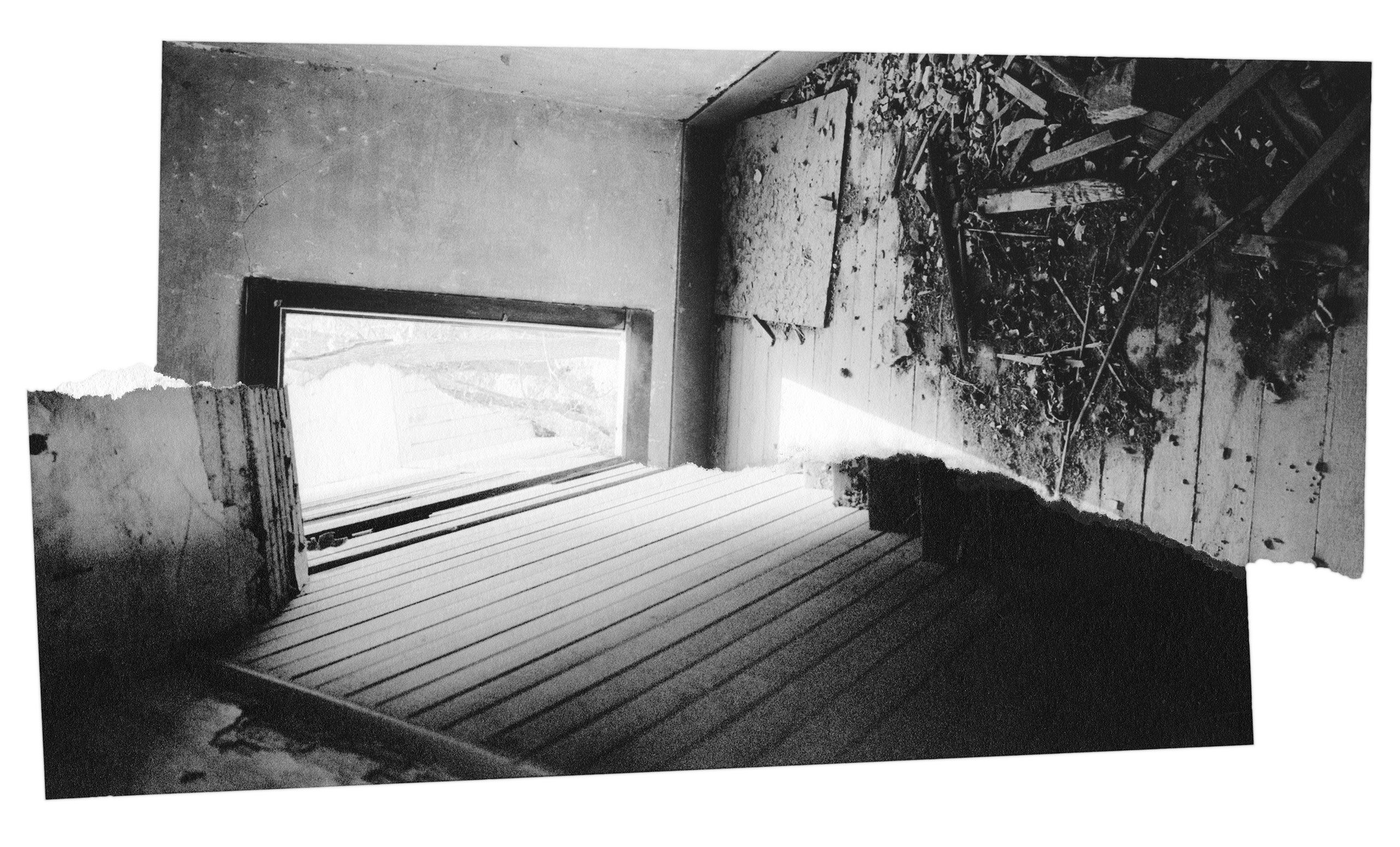 house-print1.jpg