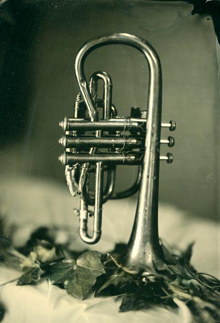 Horn TT SR.jpg