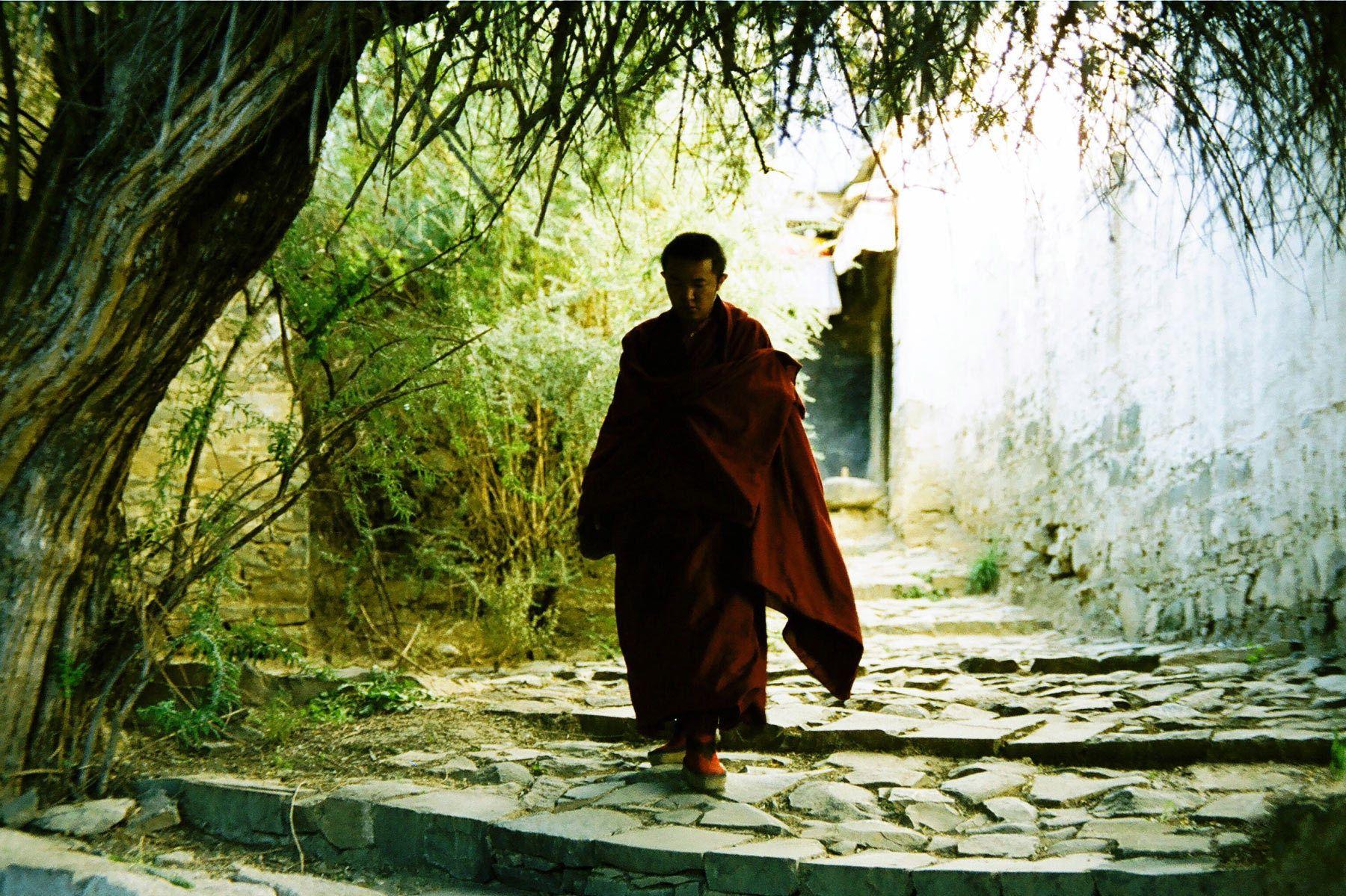 1monk_in_sera_monastery