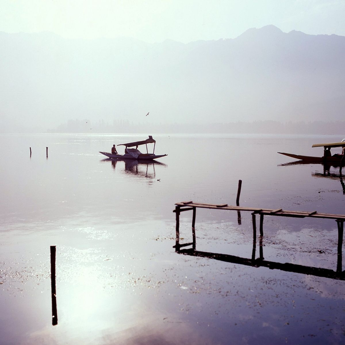 1dal_lake_morning