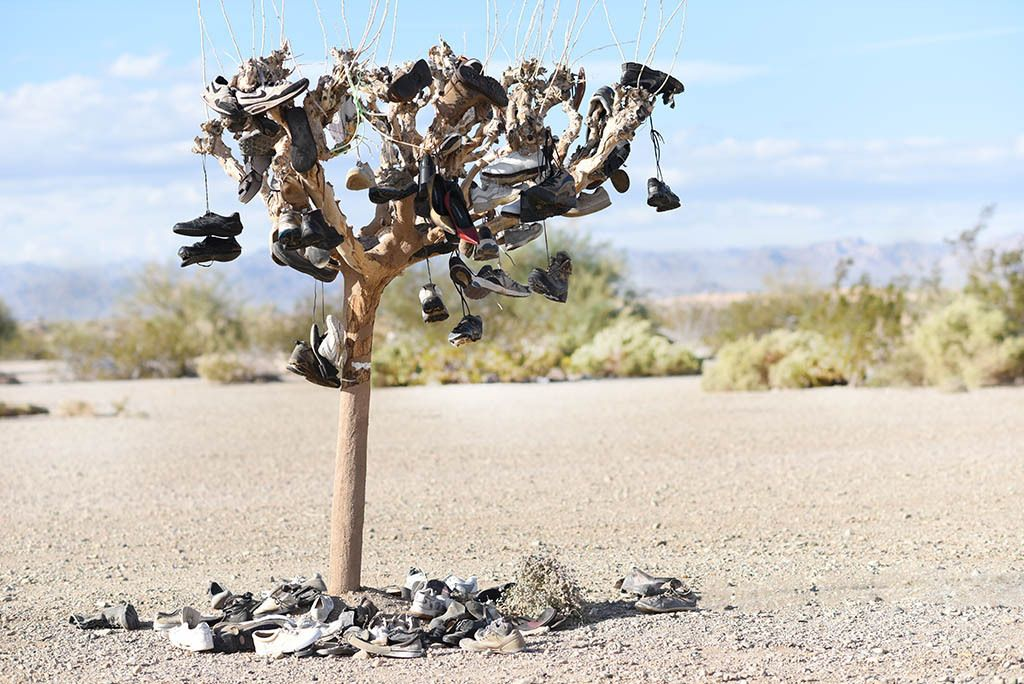 'Tree of Soles' aka 'Shoe Tree.' In Slab City people are free to do artwork as they see fit.Beal Road