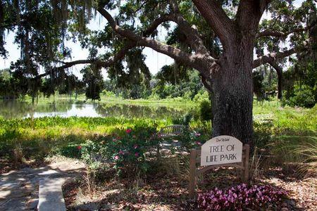 Del Webb, Montecito, Orlando