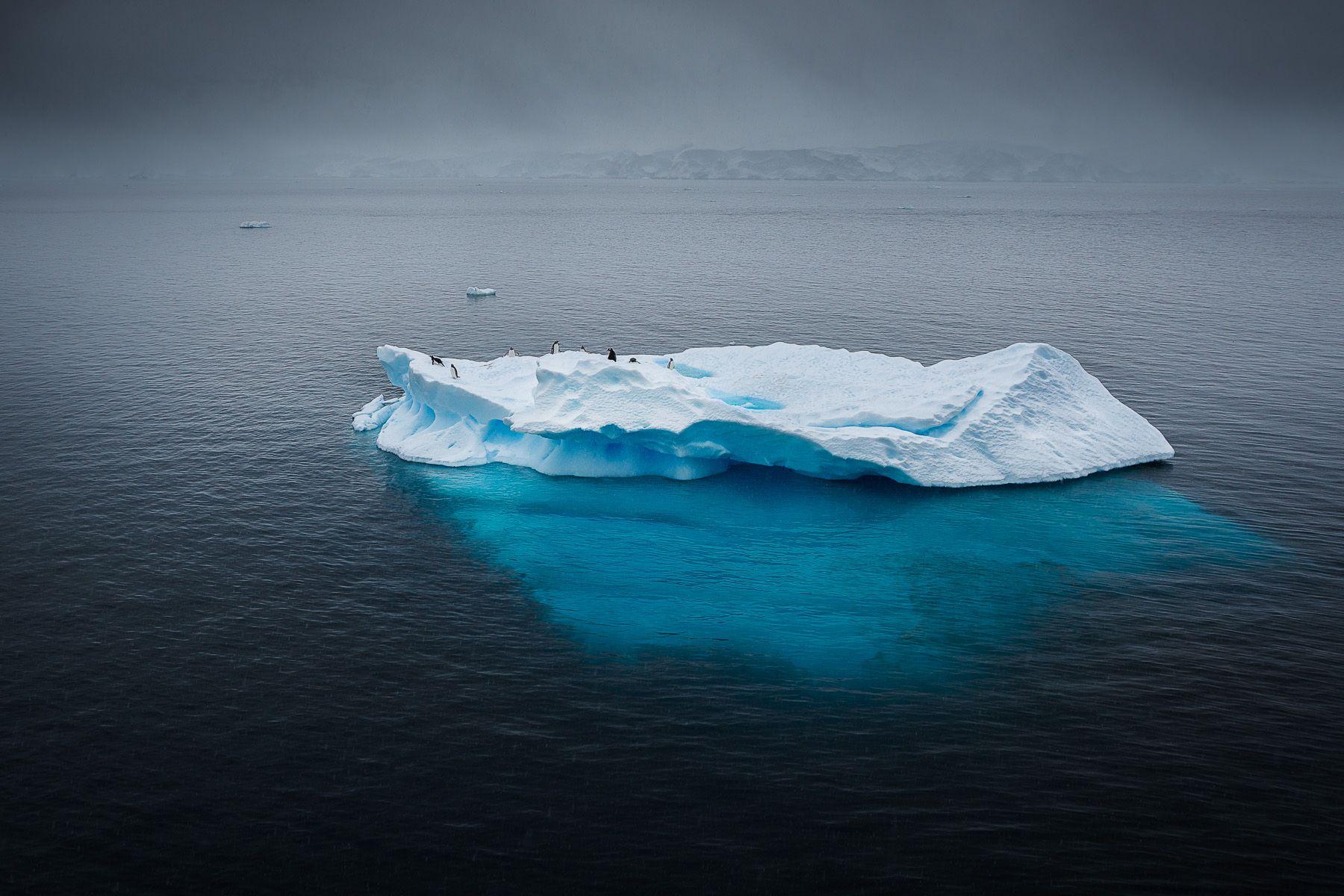 Antarctica-6.jpg
