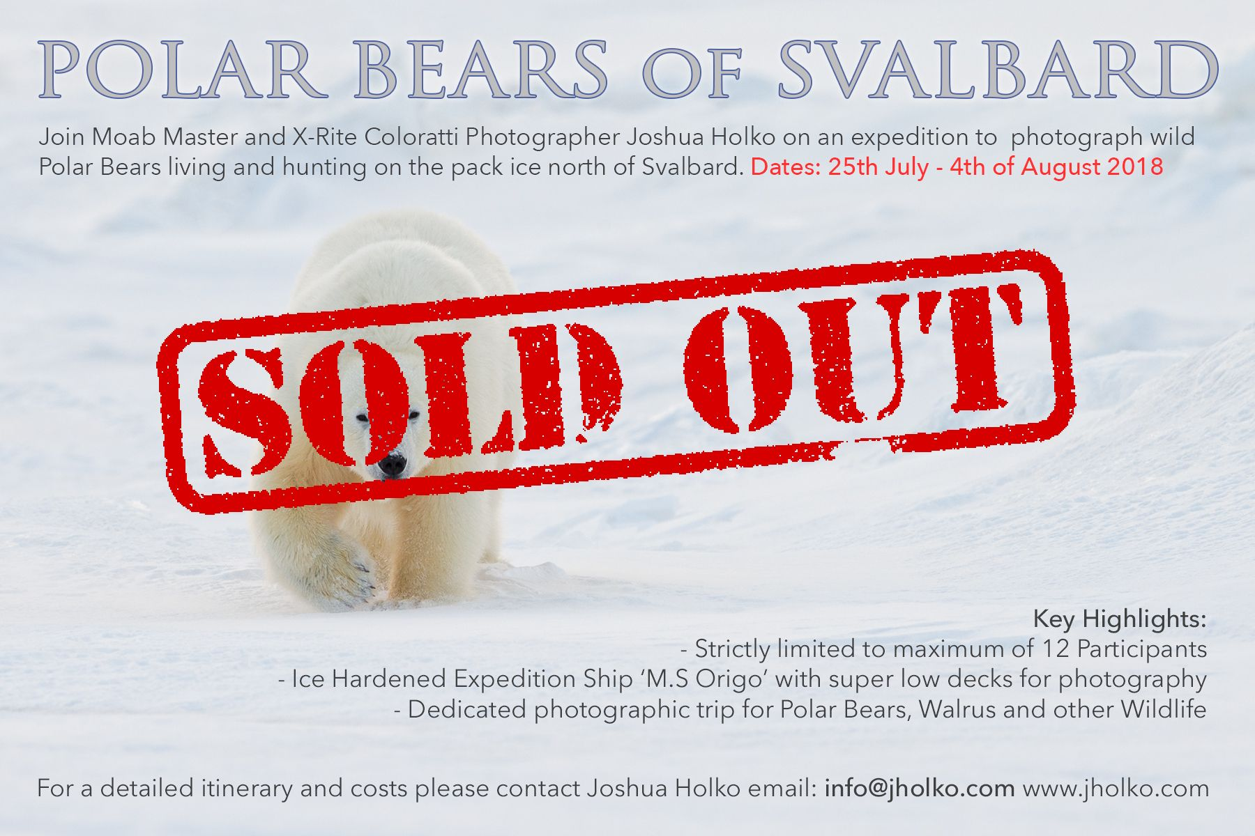 polarbear-svalbard-holko.jpg