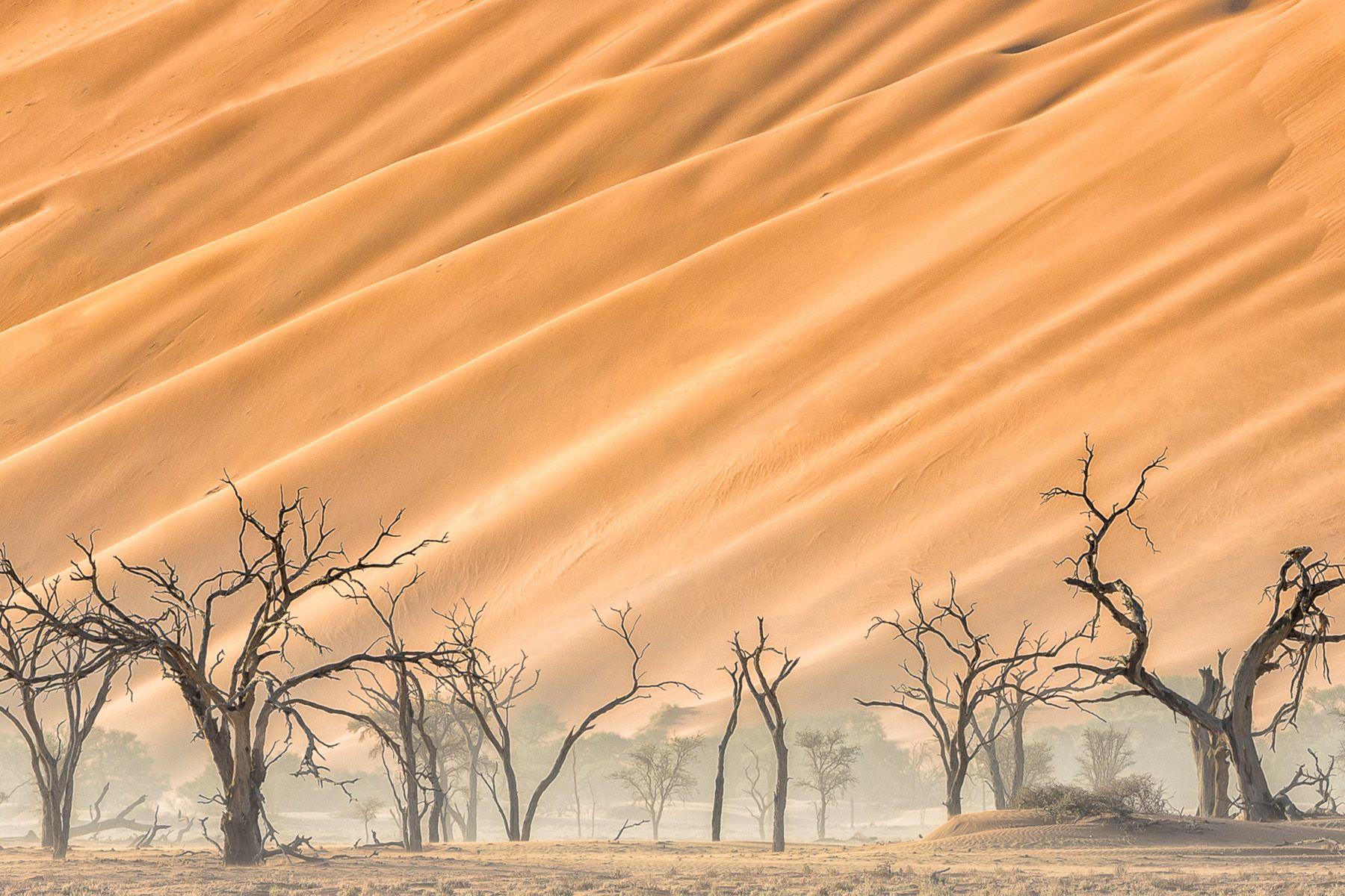 Namibia-4.jpg