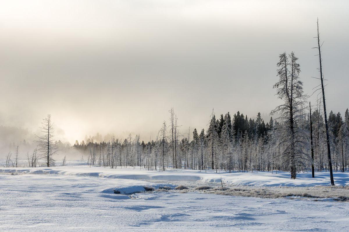 Yellowstone North America  Photography by Joshua Holko