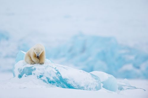 Svalbard-28.jpg