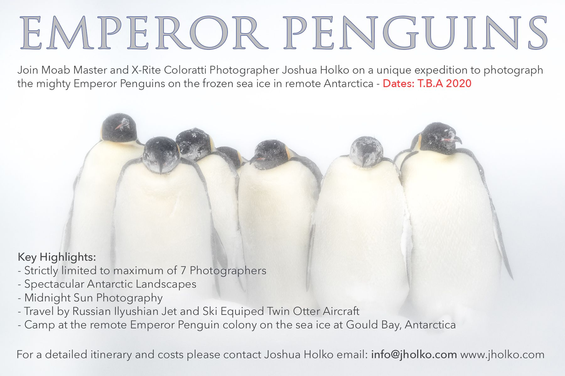 Emperor Penguins Expedition 2020