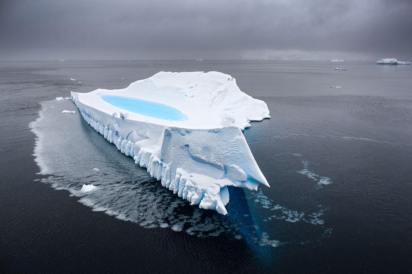 AntarcticaWhiteNature2017.jpg