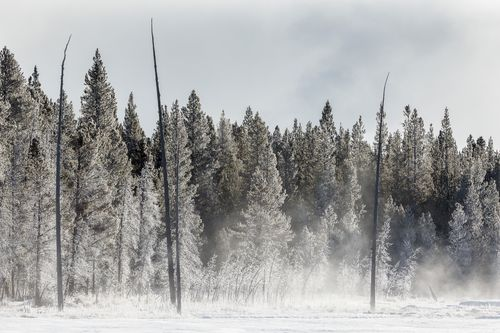 Yellowstone-4.jpg