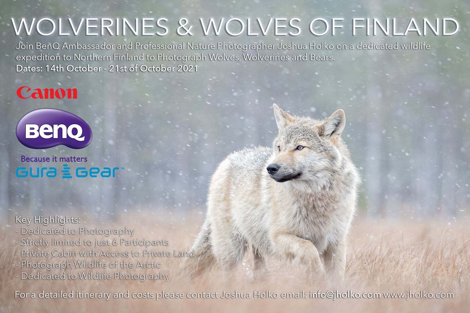 Wolverine and Wolves of Finland workshop with Joshua Holko