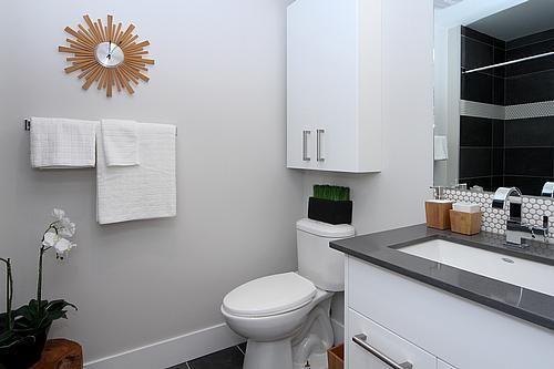 1bathroom2_500.jpg