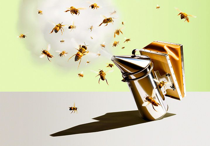 1smoker_bees
