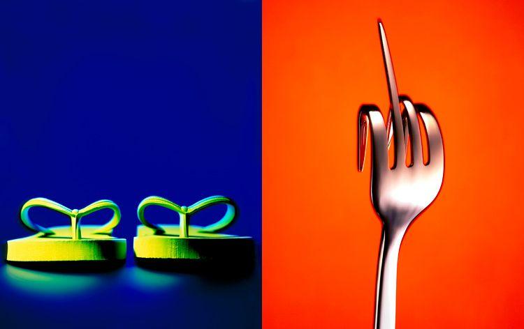 1flip_flops_fork