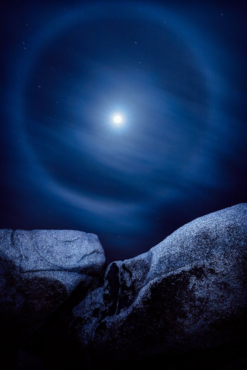 Joshua Tree Moon #02