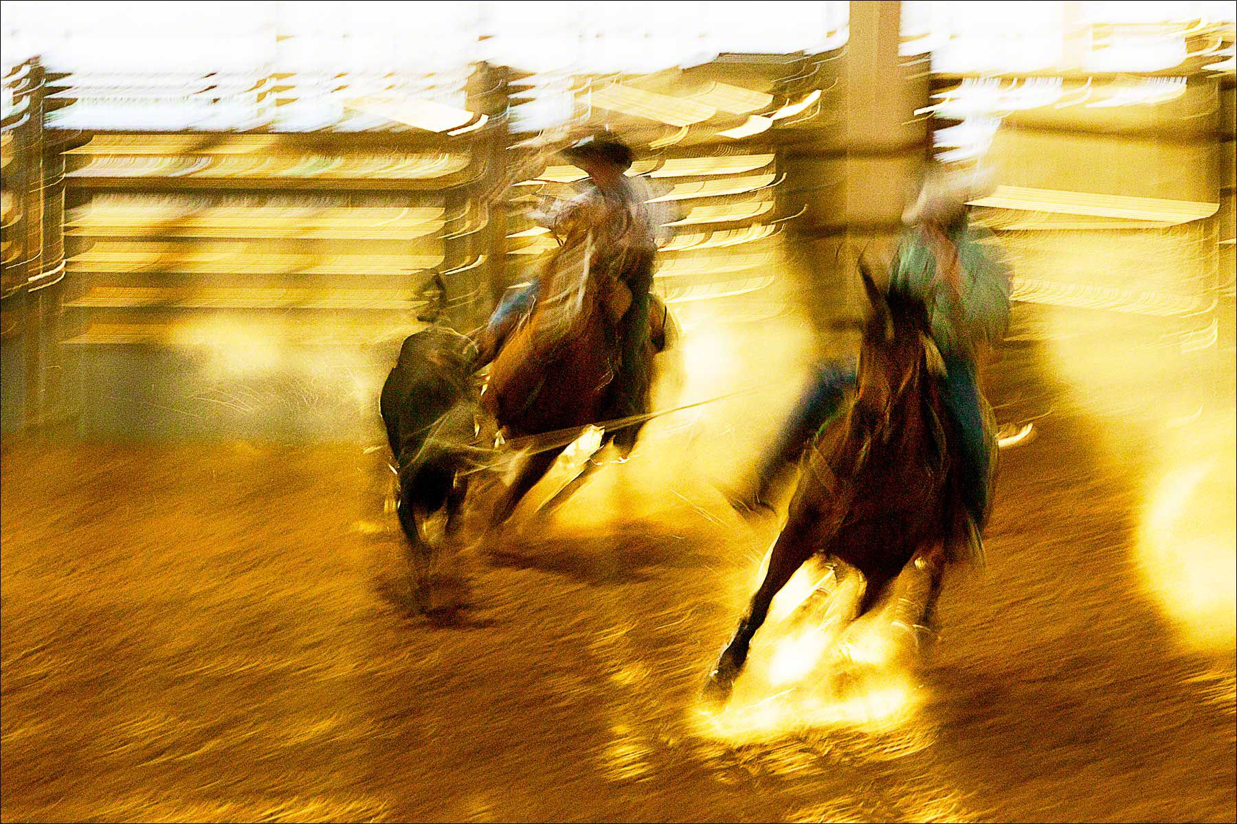 Texas Ropers