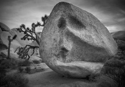 WONDERLAND OF ROCKS, JOSHUA TREE NATIONAL PARK  CALIFORNIA_