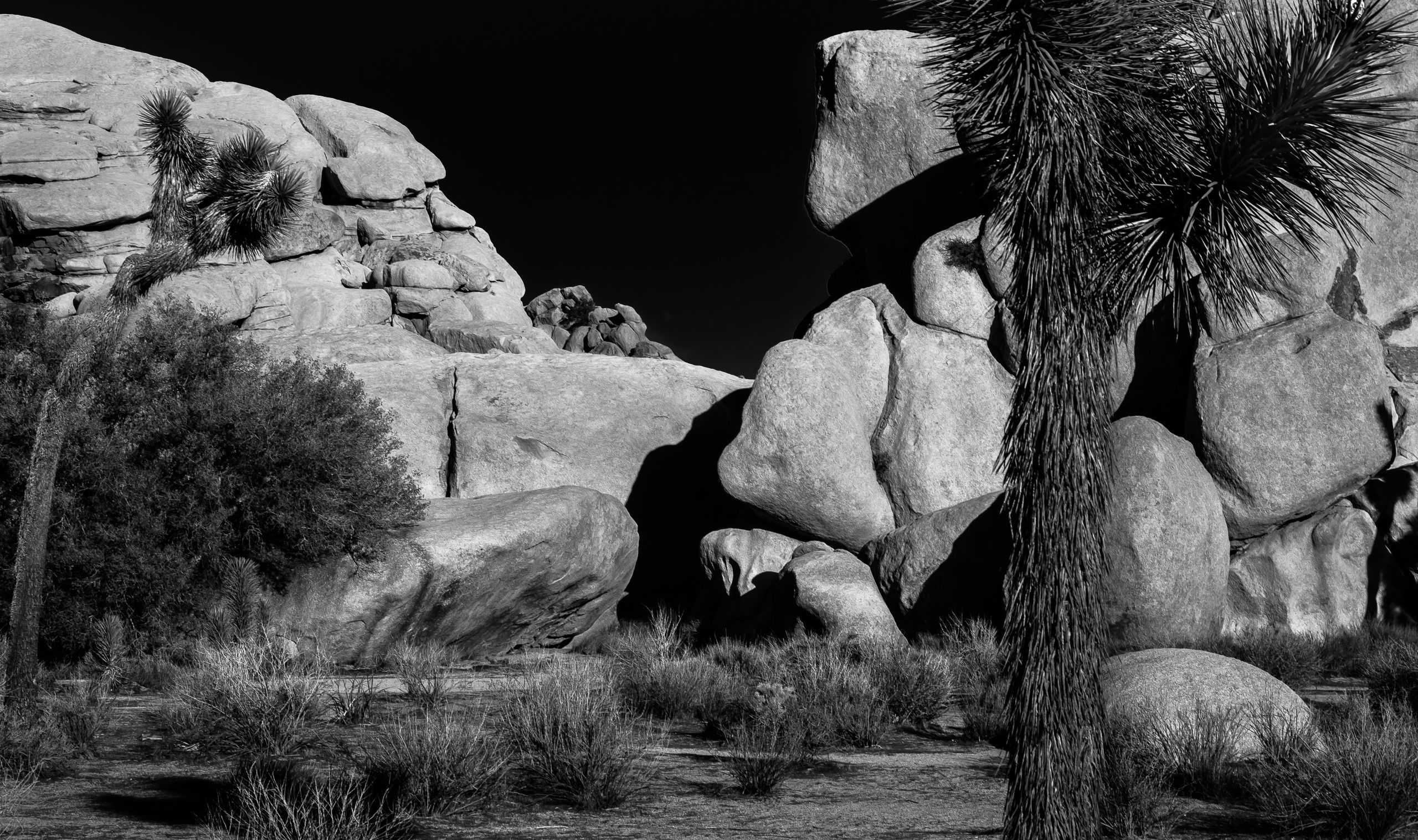 MT NIXON (TRICKY DICK HILL)  WONDERLAND OF ROCKS, JOSHUA TREE NATIONAL PARK, CALIFORNIA