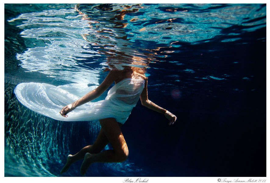 1blueorchid___tanyamalott_2014_underwater