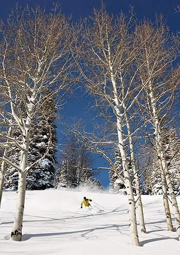Deer Valley Resort, Utah