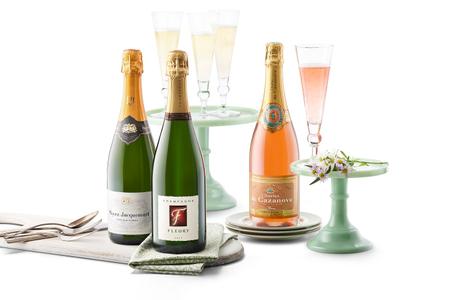 laura champagne.jpg