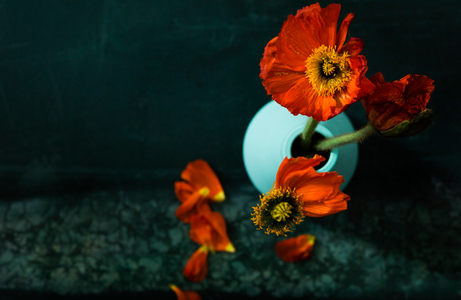 floral_details-023_JPG_small.jpg