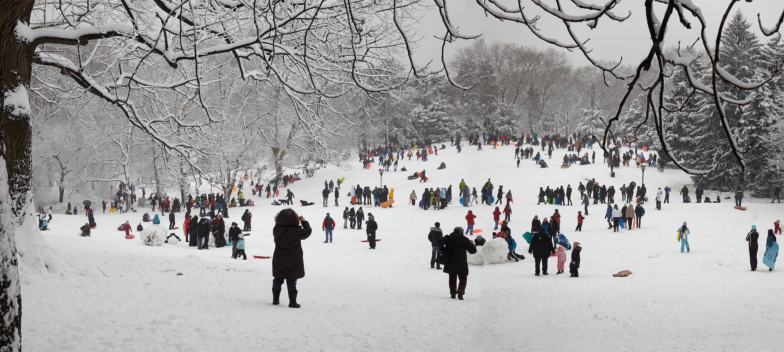 NY-Snow-Central-Park-02_10-248.jpg