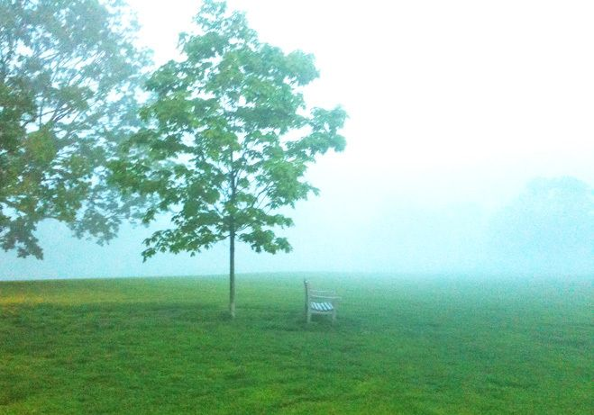 1fog_tree_solitude_chair_outdoors_loneliness_nancy_elizabeth_hill_photography_photography_calendar_greeting_card.jpg