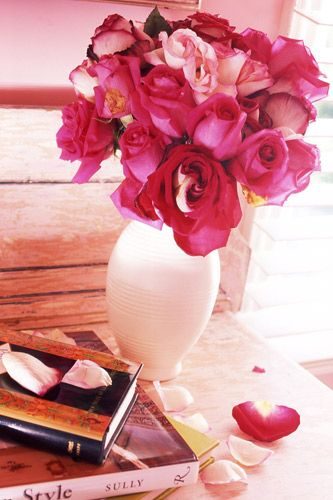 jamiedrake_pink_color_interior_vignette